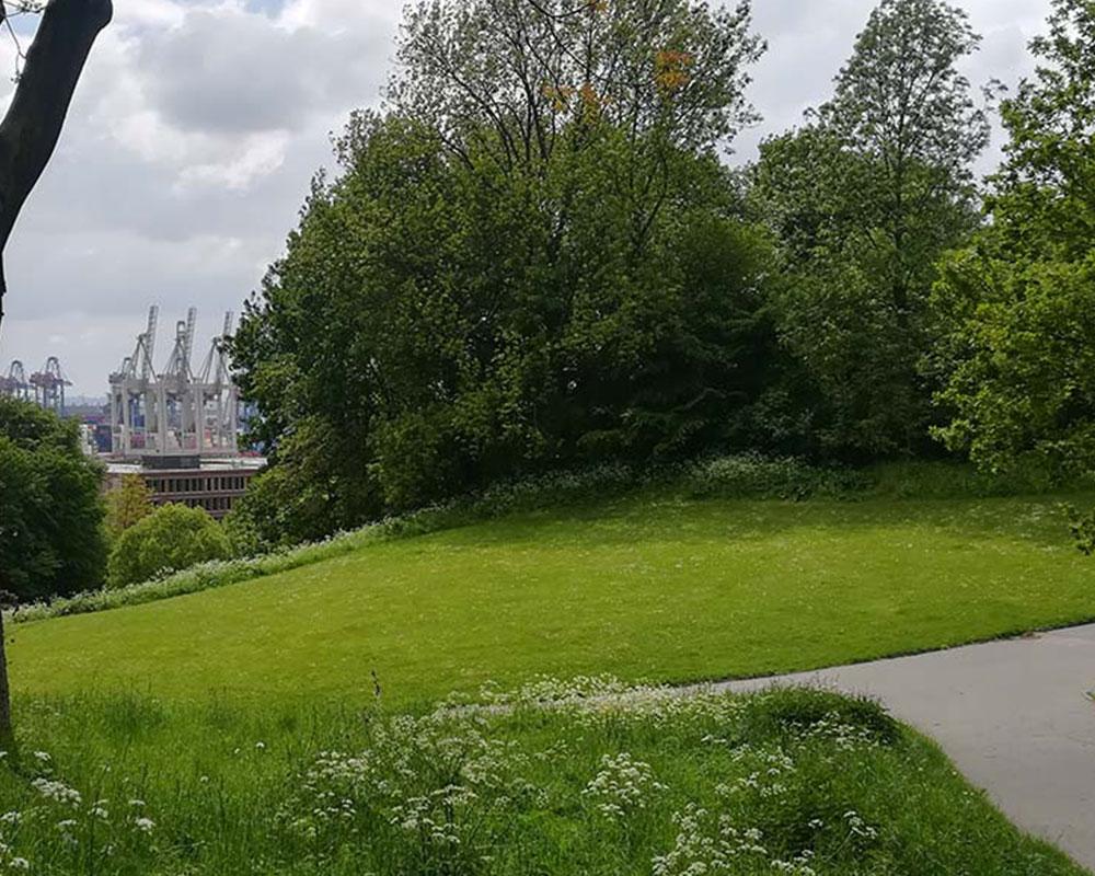 Natürlich Hamburg- Entwürfe für die Pflege- und Entwicklungspläne fertiggestellt