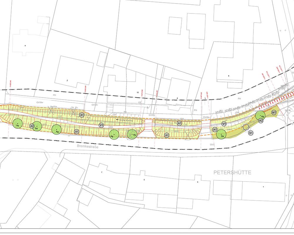 Landschaftspflegerischer Begleitplan zur Revitalisierung der Großen Bremke