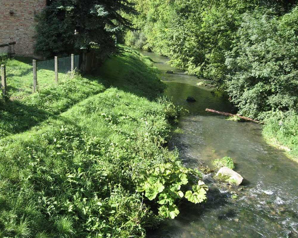 Gewässerpflegeplan Unstrut im Stadtgebiet Mühlhausen